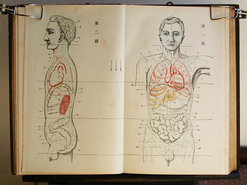 今田束『實用解剖學』卷二-明治33年十一版_20180330_9100