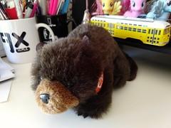 Did I not share my plushie beaver?! I'm slipping 😉 Happy #Ubuntu 18.04 release day!