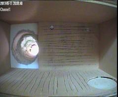 Test JVC camera op zolder met zonnewering open (waarsch. met witte lens)