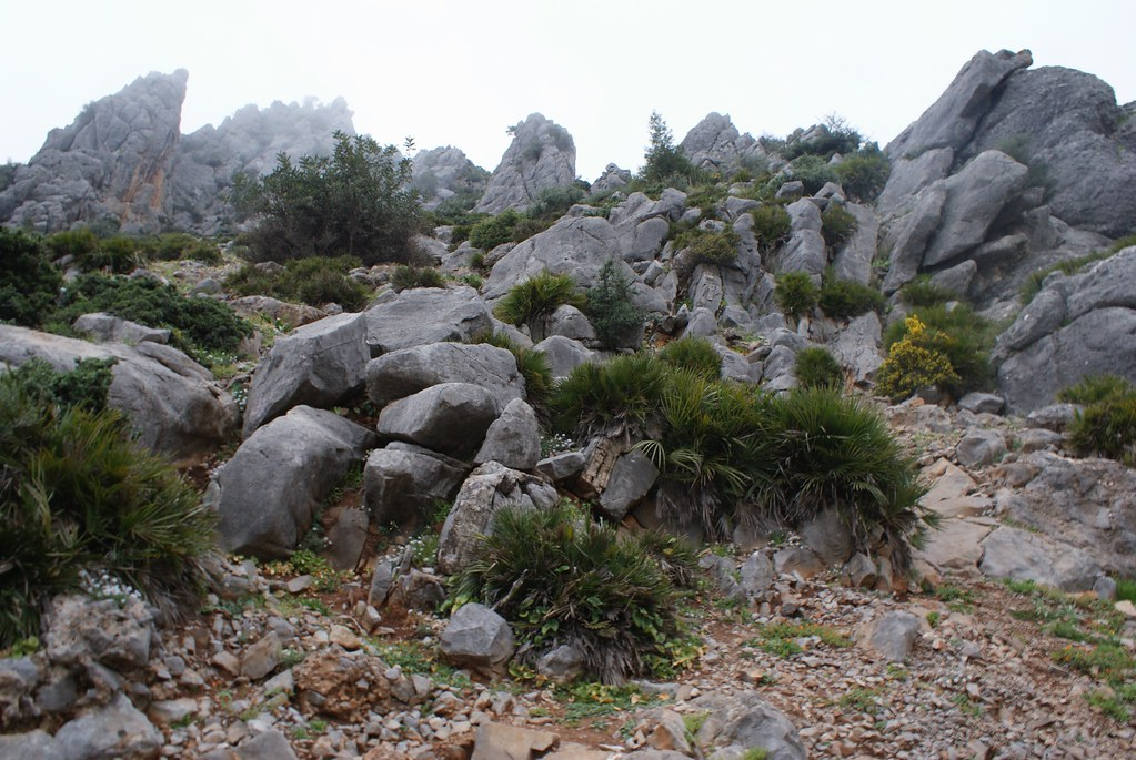 Le nom de la ville provient du berbère achawen, signifiant « les cornes », en raison des sommets montagneux qui dominent et l'entourent.