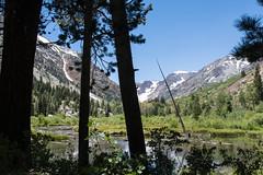 Lundy Canyon Eastern Sierra California