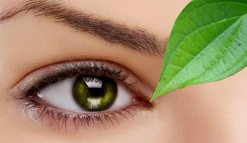 Cara Menghilangkan Lemak Mata Dengan Daun Sirih