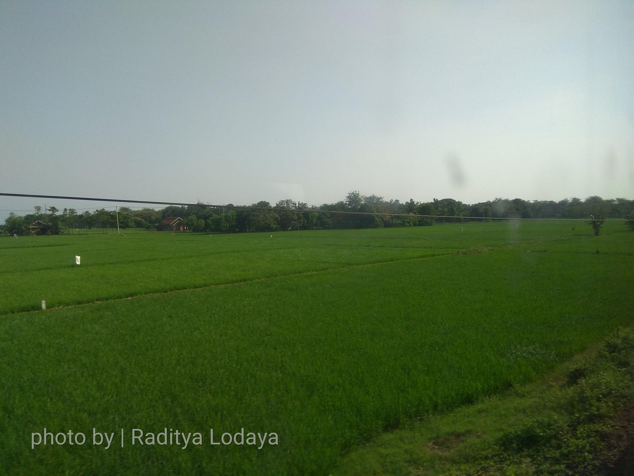 21 TRIP REPORT KERETA API JAYABAYA 1 (JAKARTA-CIREBON) -- KABUPATEN INDRAMAYU