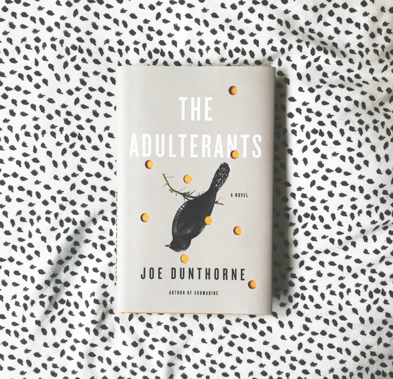the adulterants joe dunthorne book bloggers in the uk
