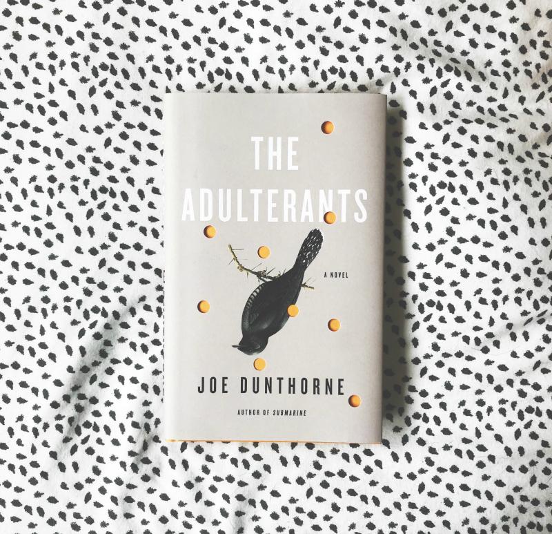 submarine book joe dunthorne pdf