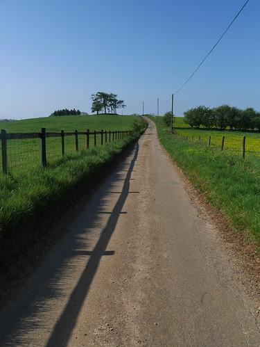 Ascending Kilkenny Hill