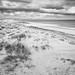 Dunes sea and sky