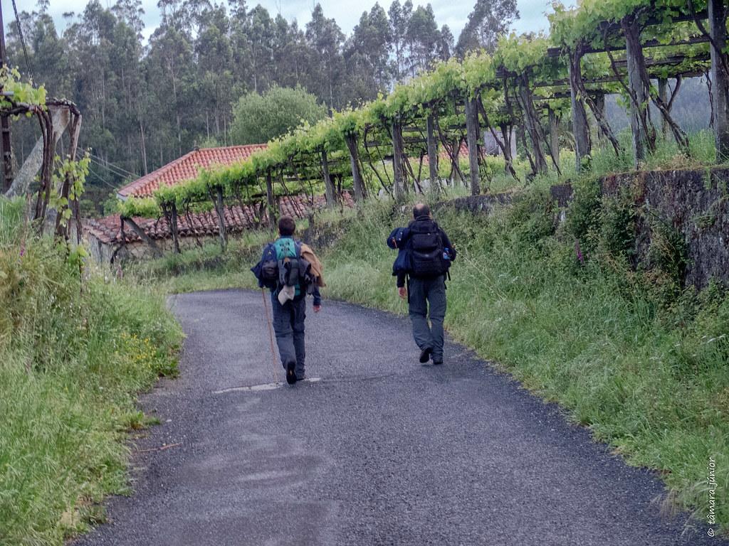 05.- CPIS - 10ª e Última etapa (Outeiro-Vedra-Santiago) (13)