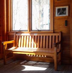Sunlight on Bench