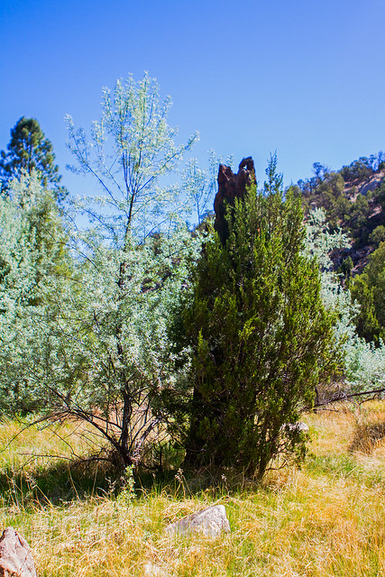 Bluewater-Canyon-16-7D1-052318