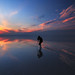 A Beautiful Reflection in Urmia lake