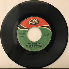 THE BEST OF BOTH WORLDS:I WANT THE WORLD TO KNOW(RECORD SIDE-B)