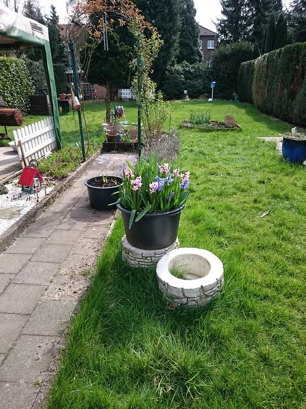 Garten2015-01