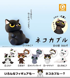 猜猜我是誰~想不到吧?SHINEG x Midori Yoshio 「偽裝貓頭套(ネコカブル)」09 月登場!