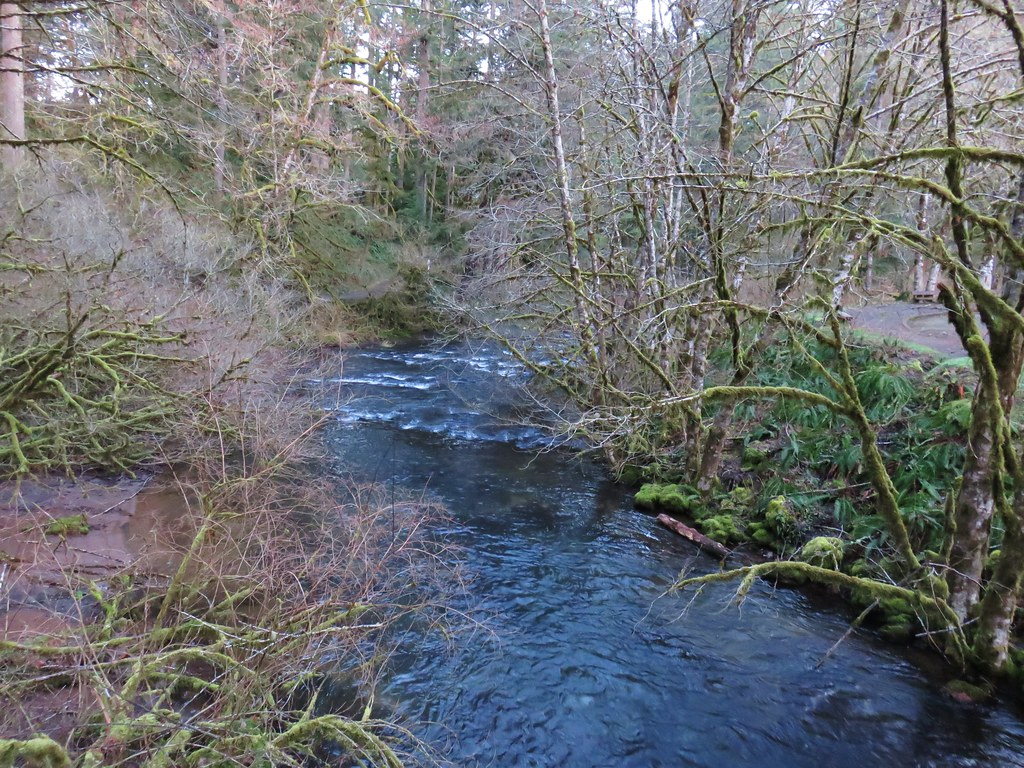 North Fork Silver Creek