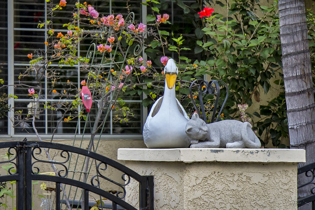 Cat and swan statues