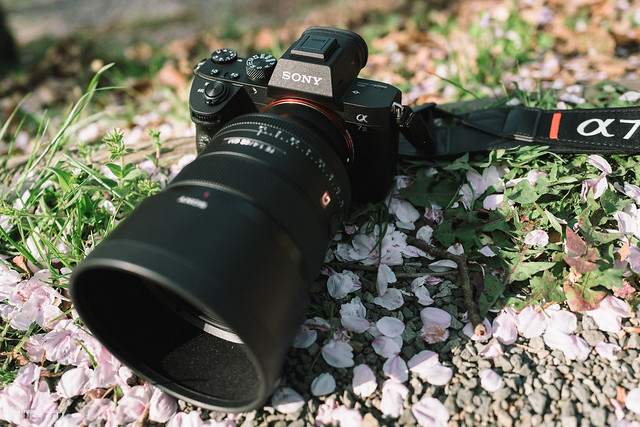 Sony A7 III Review | 01