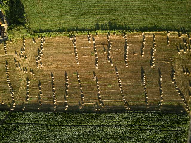 NT Drone - Church Lane Field