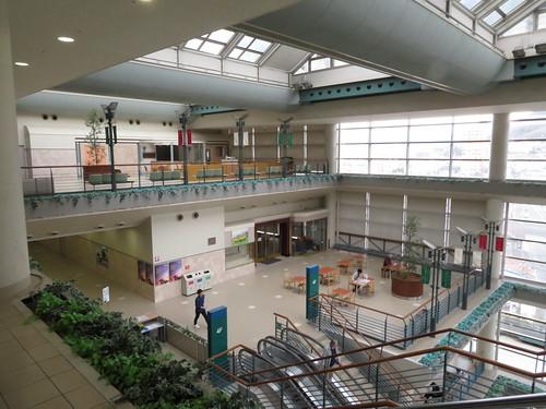 福島競馬場の5階南ガーデンテラス