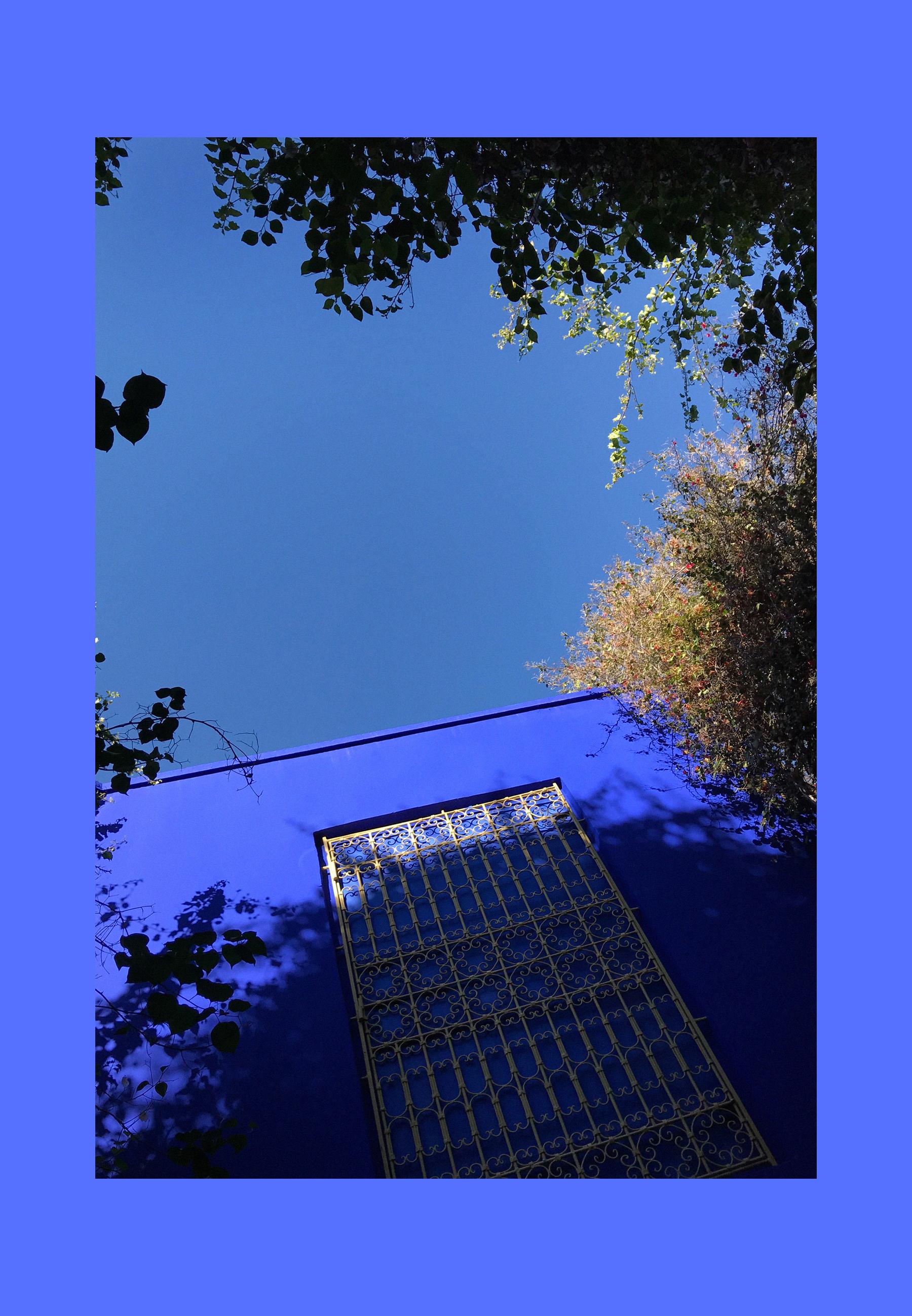 jardin majorelle yves saint laurent pierre bergé architecture musée museum morocco marrakech marrakesch travel travelblogger travelbloggers reiseblog reiseblogger reisebloggen inspiration blau bleu blue catsanddogsblog ricarda schernus max bechmann 2