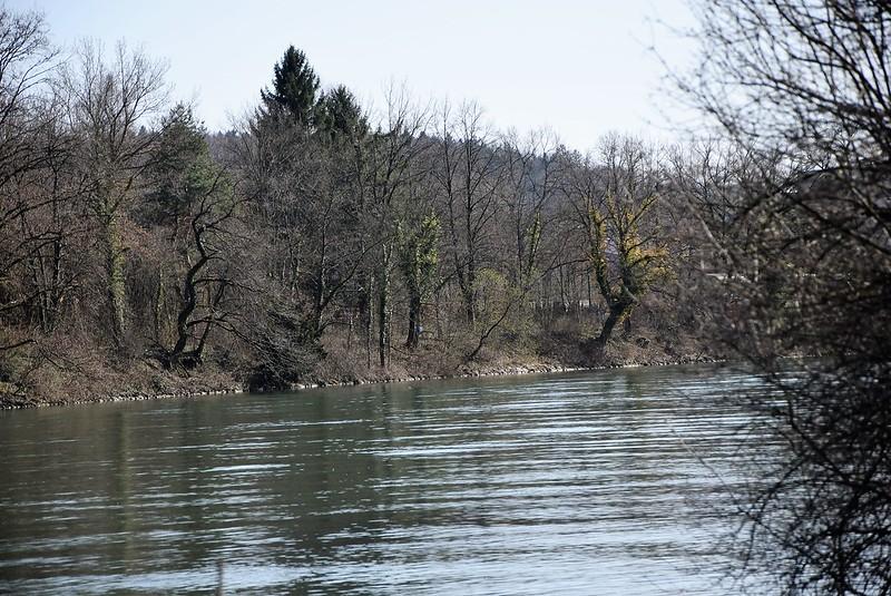 River Aar 07.04 (37)