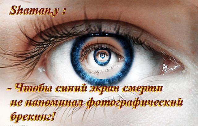 41524099105_76998cc29f_z.jpg