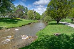 Oshawa Valley Botanical Gardens (8 of 8)