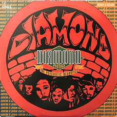 DIAMOND AND THE PSYCHOTIC NEUROTICS:WHAT U HEARD(JACKET A)