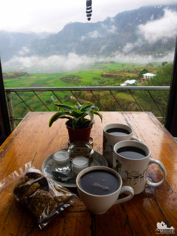 Benguet Coffee at Gaia