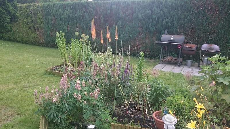 Garten2015-62