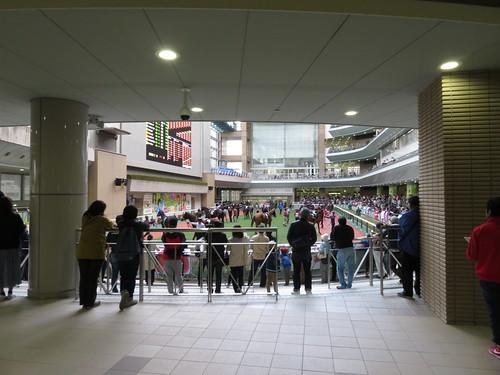 福島競馬場の2階パドック