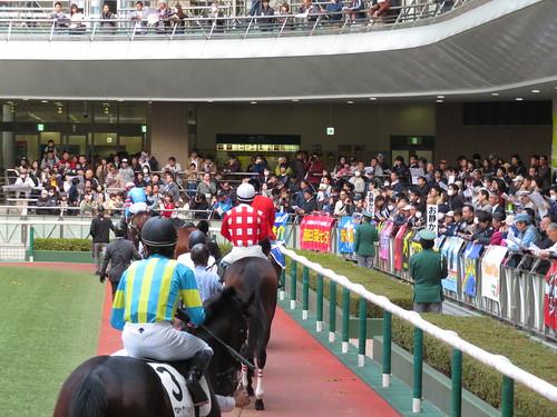 福島競馬場のパドック2階から騎手と馬を眺める