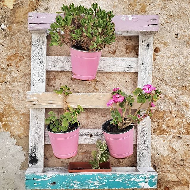 Pink and green #flowers #colorful #colors #wall #house #marzamemi #sicily #sicilia #igers #igersitalia #smooth #lovely #cute