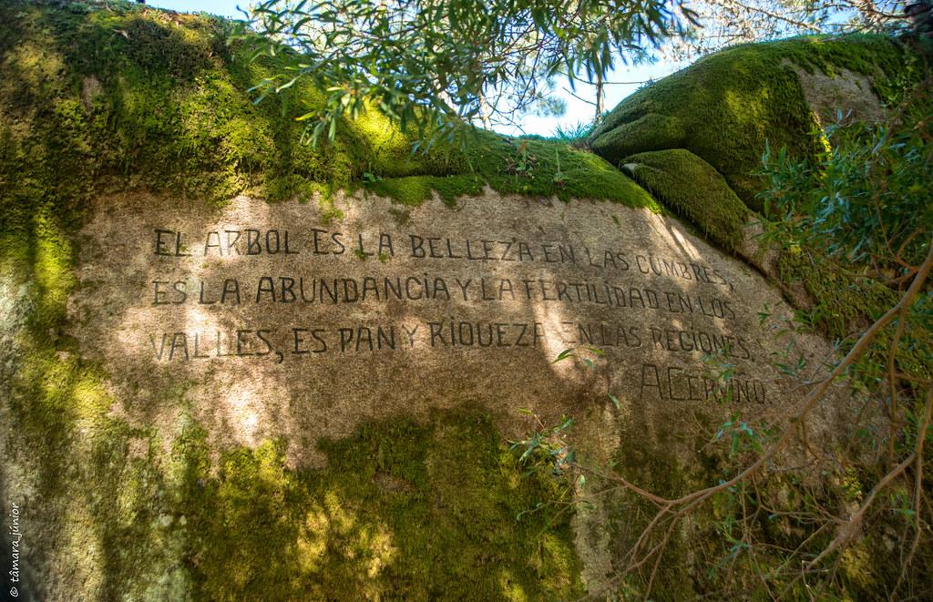 29.- Rota do Monte Aloia (248)