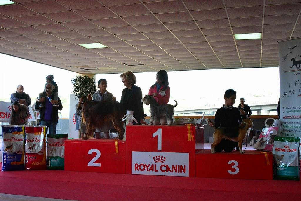 CAMPIONI INTERNAZIONALE 2014