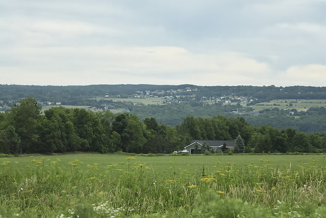 Cayuga Ridge Horizon