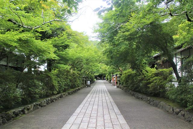 ishiyamadera-insta006