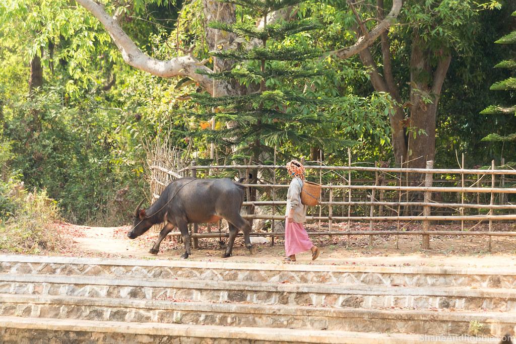 Myanmar-20180327-1879