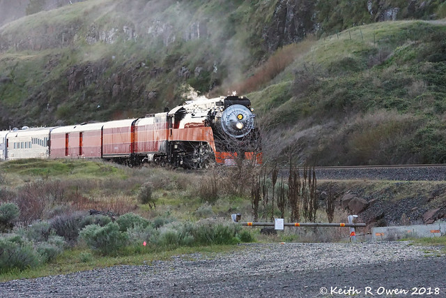 SP 4449 Special