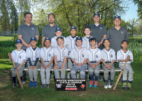 2018 SVLL Minors Falcons
