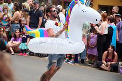 Unicorn taking Flight!