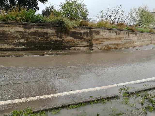 La nuova piscina olimpionica di Turi...