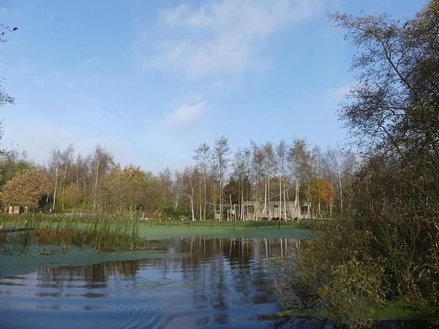 AquaZoo Friesland, Blick auf die Affenanlage