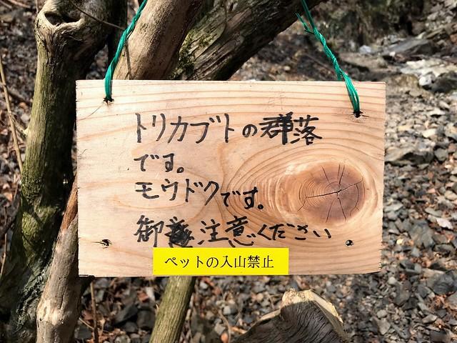 入道ヶ岳 井戸谷 トリカブト警告板