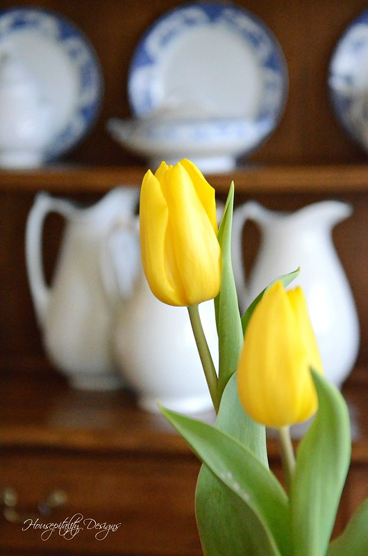 Dining Room Tulips-Housepitality Designs