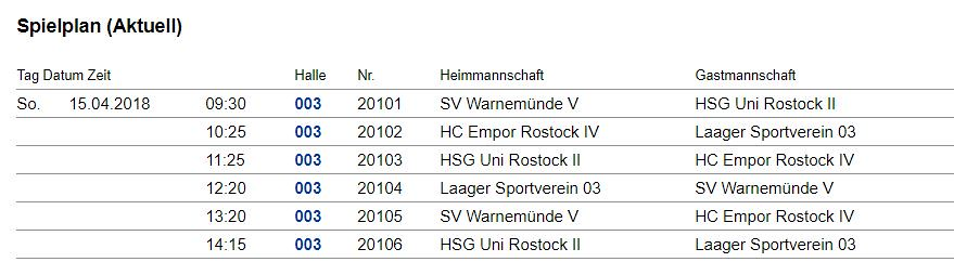 20180415 Handball Männer