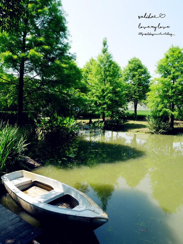宜蘭私房景點落羽松划船 (1)