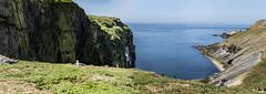 Skomer Island & Martin's Haven
