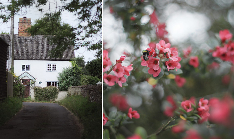 WCB Cottage