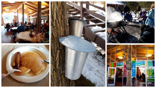 Maple Syrup Day at Ganaraska Forest Centre